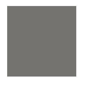 icon_disgestivesupport