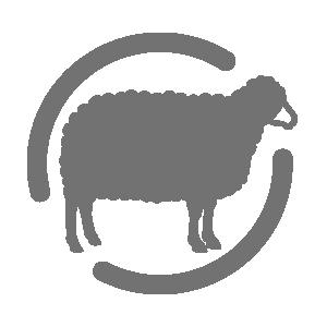 icon_lambbaseddiet